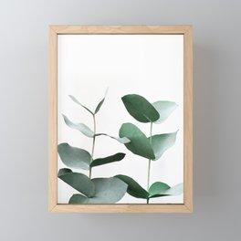Eucalyptus 5 Framed Mini Art Print