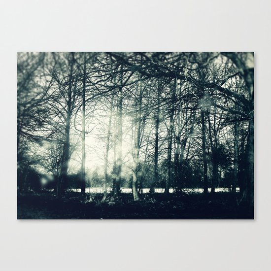 Faerie Wood Canvas Print