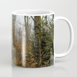 Fallen And Broken Trees After Storm Victoria February 2020 Möhne Forest 8 Coffee Mug