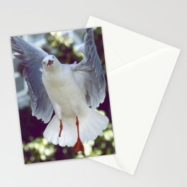 Peggy Gull Stationery Cards