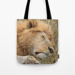 Serengeti Lion I Tote Bag