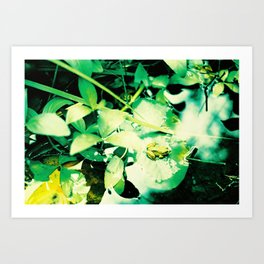 Croak Art Print