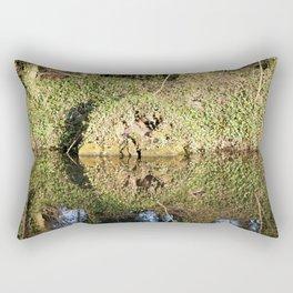 Reflection and circle Rectangular Pillow