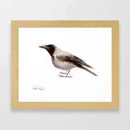 Hooded Crow Framed Art Print