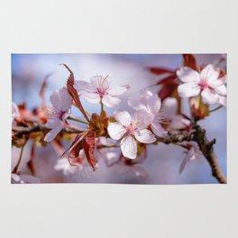 Branch of Sakura flowers Rug