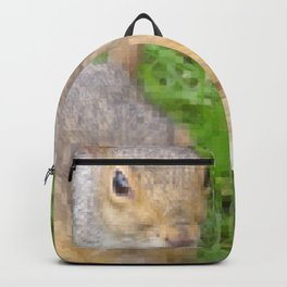 The many faces of Squirrel 2 Backpack