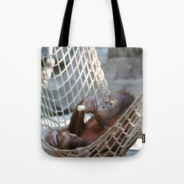 OrangUtan_2014_1202 Tote Bag