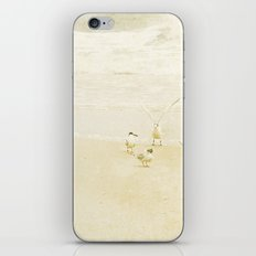 Vanilla Beach iPhone & iPod Skin