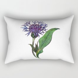 Hand drawn watercolor and ink bachelor button isolated on white background Rectangular Pillow