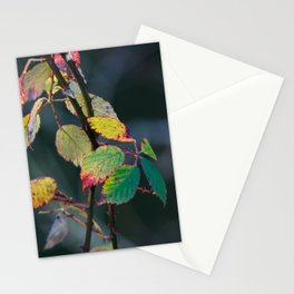 Autumn Aquarelle on the Canvas of Winter Stationery Cards
