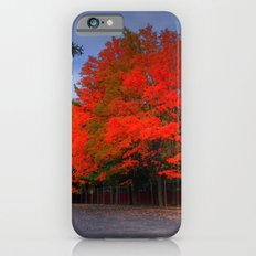 Falling for Red iPhone 6s Slim Case