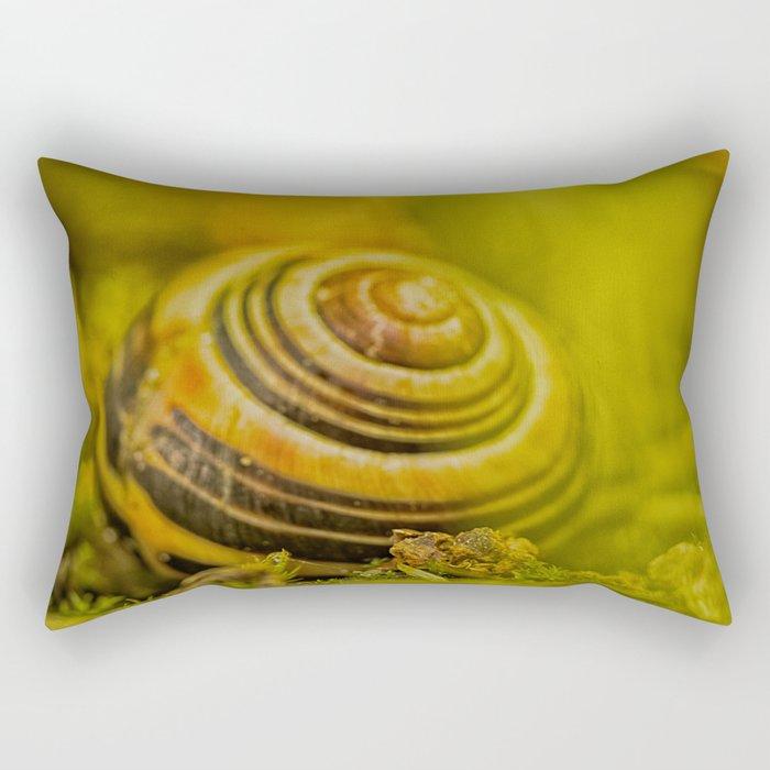 Beautiful Snail shell Rectangular Pillow