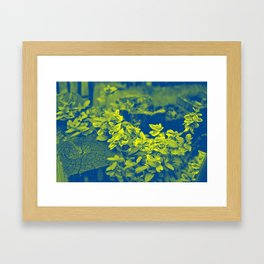Pop Art Plants Framed Art Print