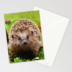 Cute Little Hedgehog Stationery Cards