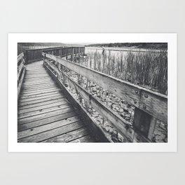 Marsh Path 4 Art Print