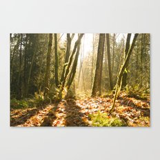 Together we can Canvas Print