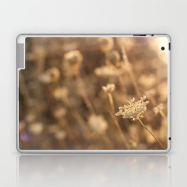 Sunflare Laptop & iPad Skin