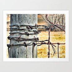 barb wire Art Print