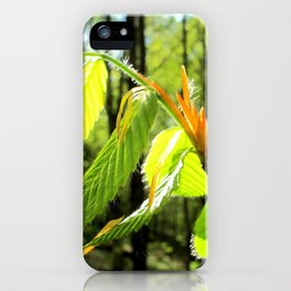 Tender and Mild iPhone Case