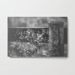 Rustic Wildflowers Metal Print
