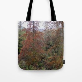 """""""Red tree"""". Deep forest at the mountains Tote Bag"""
