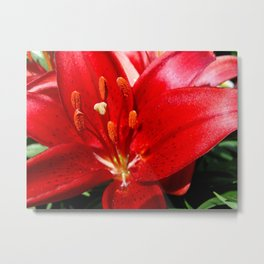 Red-Hot Floral Explosion Metal Print