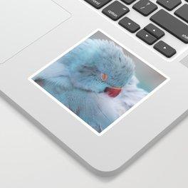 Sleeping Bird Sticker