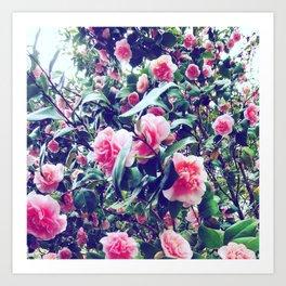Ramblin Roses Art Print