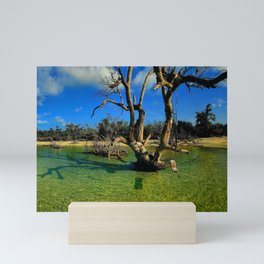 Mood Swing, Florida Keys Mini Art Print