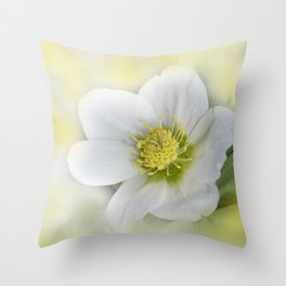 the beauty of a summerday -58- Throw Pillow