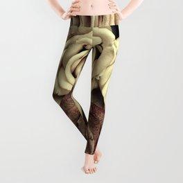 Brown Roses Leggings