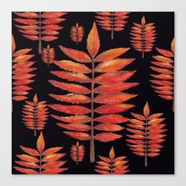 Staghorn Sumac leaves on Black Canvas Print