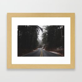 Parting Pines Framed Art Print