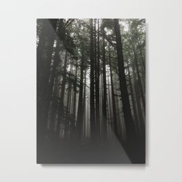 Foggy Trees, Larch Mountain, OR Metal Print