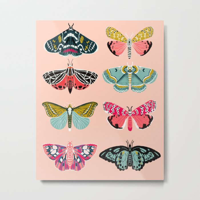 Lepidoptery No. 1 by Andrea Lauren  Metal Print