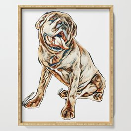 cane corso in front of white background        - Image Serving Tray