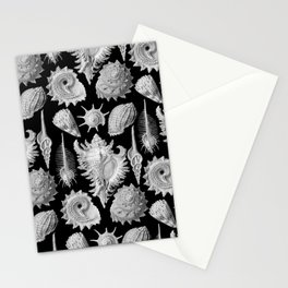 Black and White Beach Shells Stationery Cards