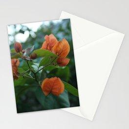 F L O R A Stationery Cards