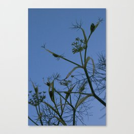 stem silhouette Canvas Print