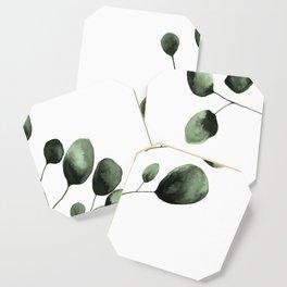 Eucalyptus Coaster