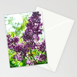 Hello Sunshine. Stationery Cards