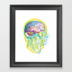 Anatomy Skull Framed Art Print