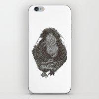 guinea pig iPhone & iPod Skins featuring Guinea Pig. by Elena O'Neill
