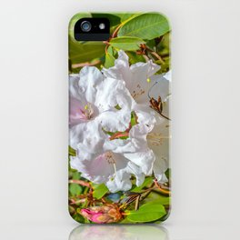 The Lost Gardens of Heligan - White Rhododendron iPhone Case