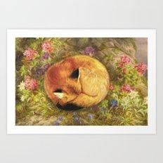 The Cozy Fox Art Print