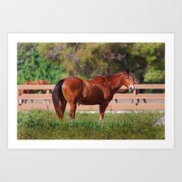 A Horse is a Horse Art Print