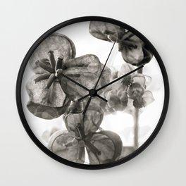 akebia bw Wall Clock