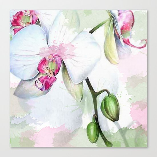 Orchids 04 Canvas Print
