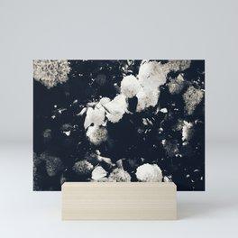 High Contrast Black and White Snowballs II Mini Art Print