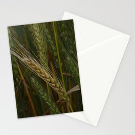 Waving Wheat Stationery Cards